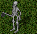 skeleton hunter
